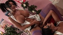 Sexy Big Tits Brunettes Kit and Kat Lee got fucked hard & rough in the shop