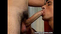 Javier and Franko Well hung twinks have anal sex